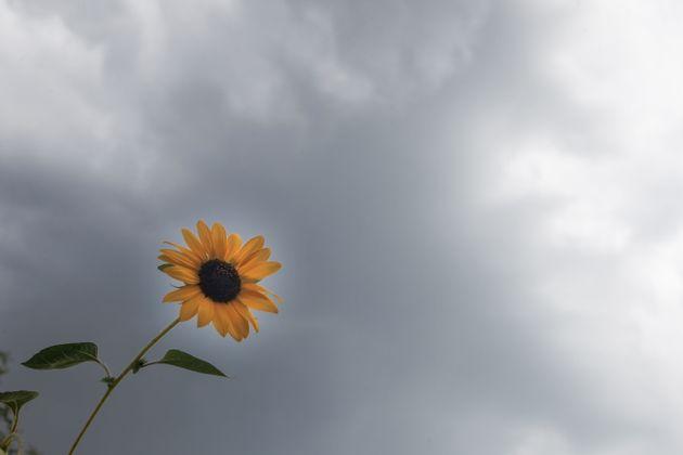 Καιρός: «Φθινόπωρο» μέσα στο καλοκαίρι - Σε ποιες περιοχές θα