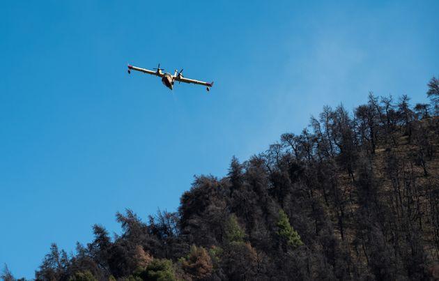 Υψηλός ο κίνδυνος για πυρκαγιά και την Κυριακή- Δείτε σε ποιες