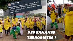Trump veut placer ces militants déguisés en banane sur la liste des organisations