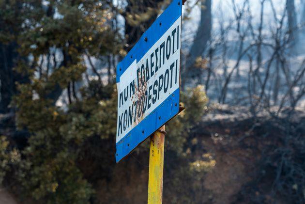 Σε ύφεση και οριοθετημένη η πυρκαγιά στην Εύβοια - Πόσα στρέμματα