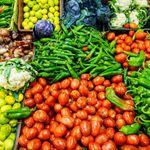 La balance commerciale alimentaire déficitaire de 801,4 MD à fin Juillet