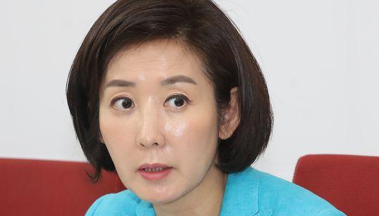 """경찰, """"나경원 의원에게 악플 단 100여명 신원"""