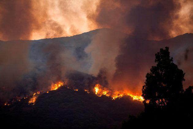 Fuego en el paraje Peñas Blanca de la localidad malagueña de