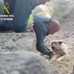 El gesto de dos guardia civiles en el incendio de Gran Canaria que se lleva una ovación en