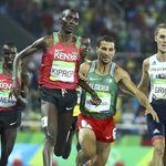 Taoufik Makhloufi aligné sur le 1500m au meeting de