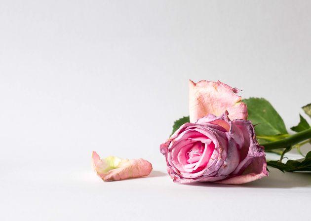 Il ricordo di Cristina Biagi e delle vittime di femminicidio