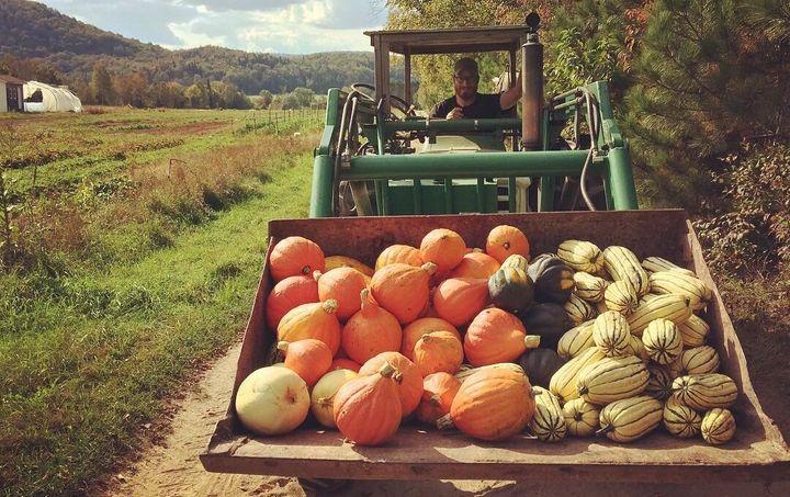 Lors des semaines les plus chargées, Mathieu passe bien 30 heures sur son tracteur.