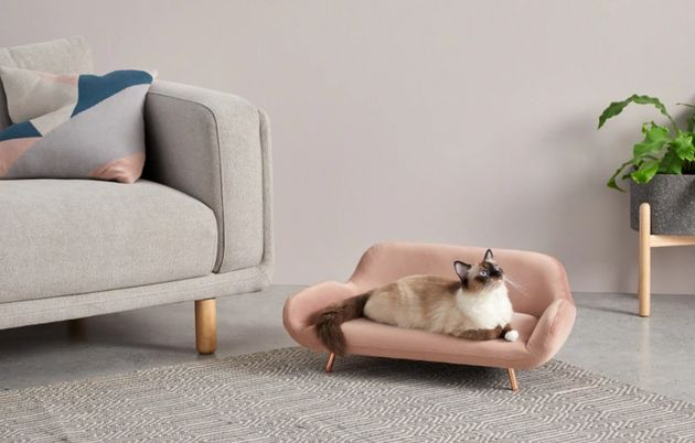 12 Stylish Pet Accessories That Wont Make Your Front Room Look Terrible