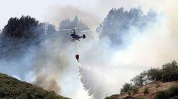 La recuperación completa de la zona del incendio en Gran Canaria tardará