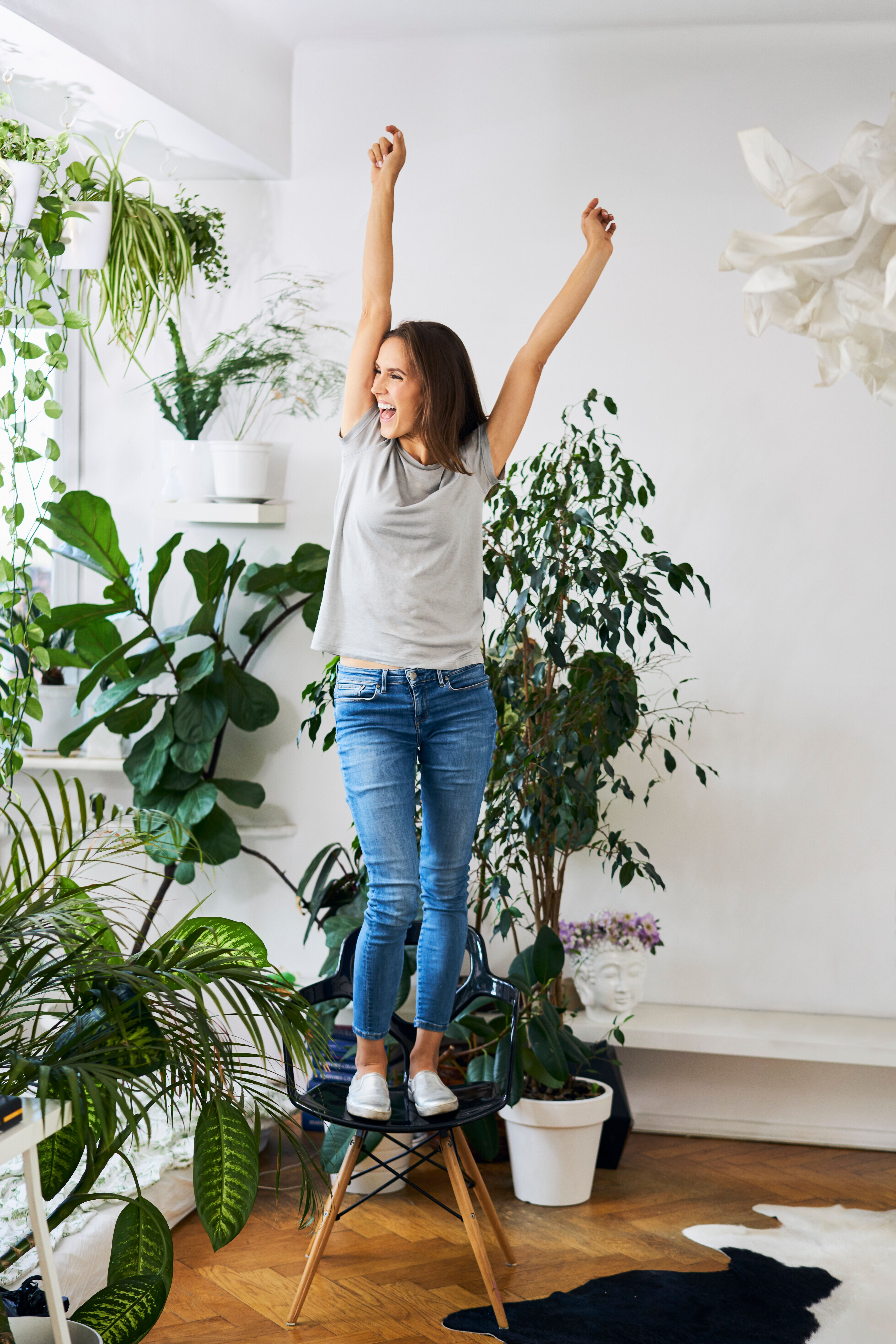 Raised Plant Stands Under 50 For The Proud Plant Parent Huffpost Life