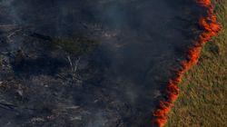 Brasil bateu recorde de focos de queimadas na última