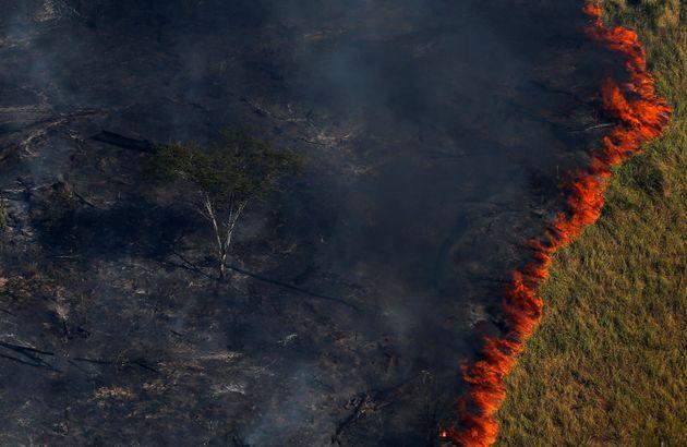 Focos de queimadas no País batem recorde e passam de 70 mil pontos no