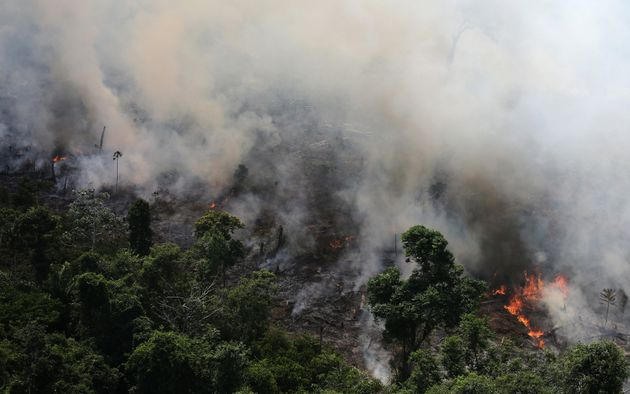 A 2013 photo shows an aerial view of a tract of Amazon jungle burning as it is being cleared by loggers...