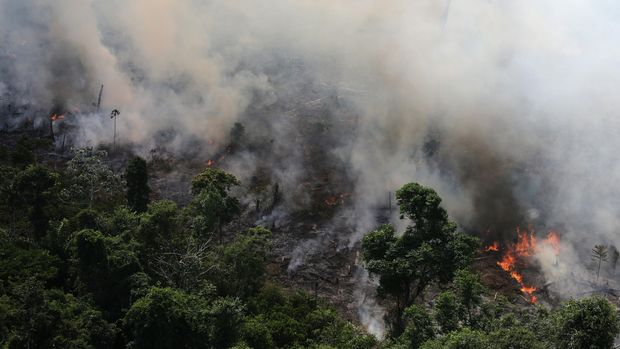 An aerial view of a tract of Amazon jungle burning as it is being cleared by loggers and farmers near the city of Novo Progresso, Para state, Brazil September 23, 2013. Picture taken September 23, 2013.  REUTERS/Nacho Doce