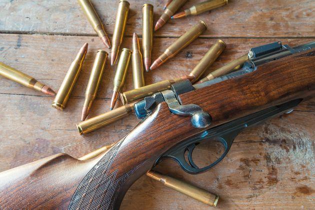 Registre des armes à feu: aucune amende imposée depuis l'adoption de la