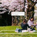 「日本の住所は長すぎる」⇒正確な位置情報を3単語で表現する企業登場