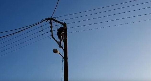 Βίντεο: Σκαρφάλωσε σε στύλο της ΔΕΗ στα Χανιά για να παίξει