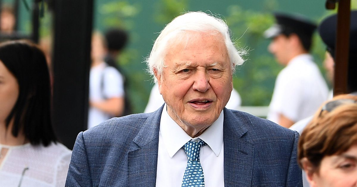Sir David Attenborough Has Some Very Strong Opinions About Brexit