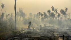 Sem provas, Bolsonaro diz que ONGs podem ter provocado queimadas na