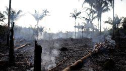 L'Amazonie brûle et Bolsonaro insinue que ça pourrait être la faute de certains