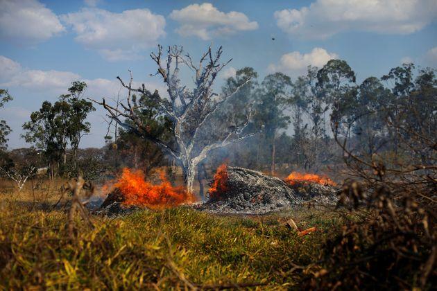 Brasil 2019: O que está acontecendo, na verdade, não está