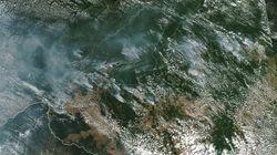 La Amazonía está en llamas y Bolsonaro insinúa que la culpa es de las