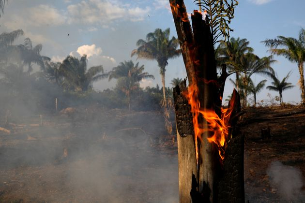 A tract of Amazon jungle is seen burning as it is being cleared by loggers and farmers in Iranduba, Amazonas...