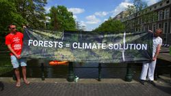 Εμπρηστικές δηλώσεις Μπολσονάρου: Οι ΜΚΟ βάζουν φωτιές στον