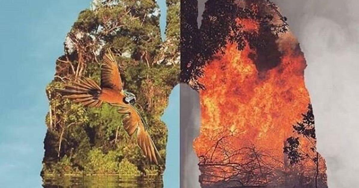 #PrayForAmazonas l'appello dei social per fermare gli incendi in Amazzonia