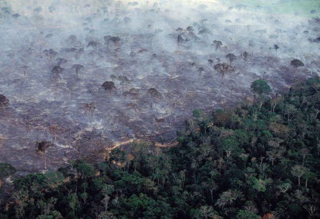Vista aérea de la deforestación en Acre (Brasil), en