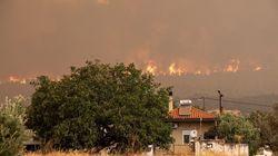 Πυροσβεστική: 36 δασικές πυρκαγιές το τελευταίο 24ωρο σε όλη τη
