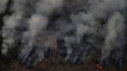 La déforestation explique la majorité des incendies en Amazonie, estime un