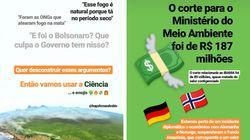 Queimadas na Amazônia: Biólogo faz tutorial para desconstruir 'desculpas' do governo