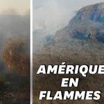 La forêt amazonienne est en feu ? La Bolivie