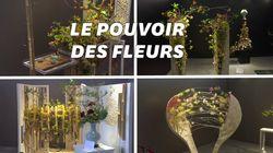Ces œuvres florales vont vous faire voir les plantes