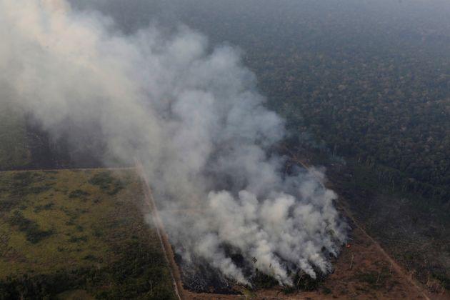Incêndio na Amazônia aponta perigo da desregulamentação em meio à mudança climática