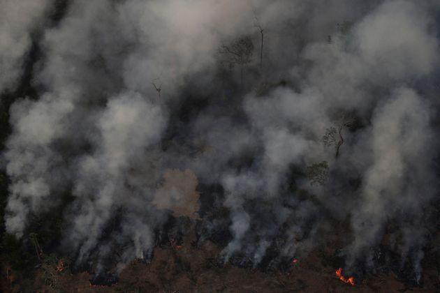 Διεθνής ανησυχία για τις φωτιές στον Αμαζόνιο- για «παρέμβαση» μιλά ο