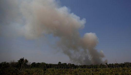Pressão internacional por proteção à Amazônia cresce e Bolsonaro