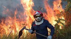 Amazzonia in fiamme, processo a Bolsonaro. Ma Trump resta in