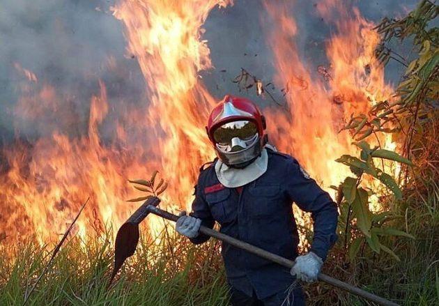 Amazzonia in fiamme |  processo a Bolsonaro  Ma Trump resta in silenzio