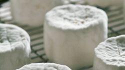 Des fromages Chaource contaminés par des bactéries e.coli