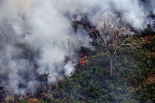 Une image aérienne montre le feu qui fait actuellement rage dans la forêt amazonienne, dans...