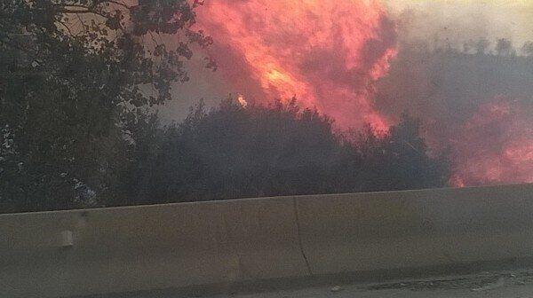 Alger : Un incendie à Dounia Parc sans faire de victimes ni de dégâts