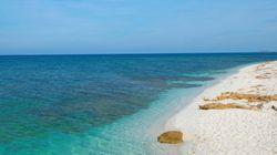 Victime de vols de sable, une plage de Sardaigne crée des