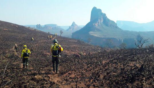 Πυρκαγιές στον Αμαζόνιο: Οι καταστροφές της φωτιάς σε Κολομβία και