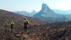 En Bolivie les incendies ont ravagé près d'un million