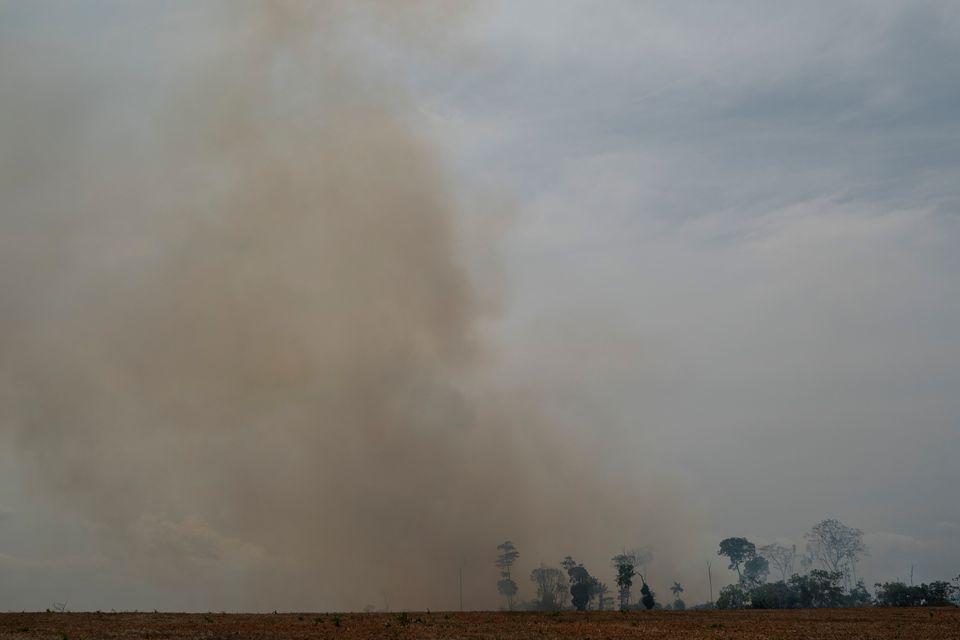 Fire consumes a field in Novo Progresso, Para state, Brazil, Saturday, Aug.