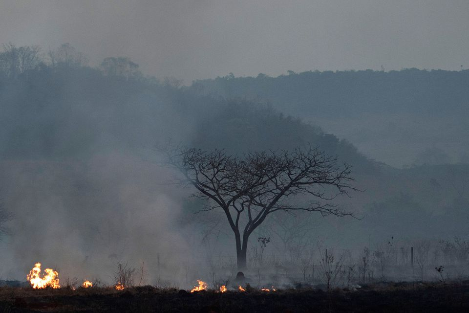 Fire consumes a field alongside the BR 163 highway in Nova Santa Helena municipality, Mato Grosso...