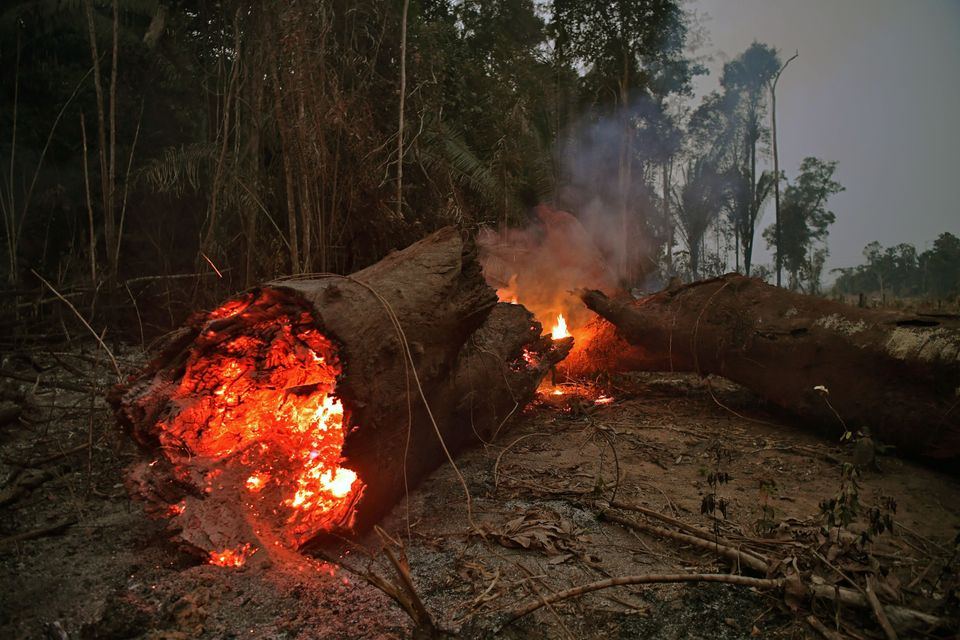 View of fire in the Amazon rainforest, near Abuna, Rondonia state, Brazil, on August 24,