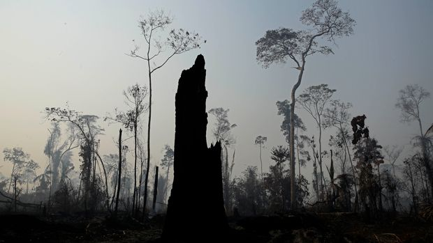 Charred trees stand after a forest fire in the Vila Nova Samuel region, along the road to the Jacunda National Forest near the city of Porto Velho, Rondonia state, part of Brazil's Amazon, Sunday, Aug. 25, 2019. Leaders of the Group of Seven nations said Sunday they were preparing to help Brazil fight the fires burning across the Amazon rainforest and repair the damage even as tens of thousands of soldiers were being deployed to fight the blazes that have caused global alarm. (AP Photo/Eraldo Peres)